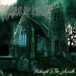 Midnight In The Labyrinth 2 LP